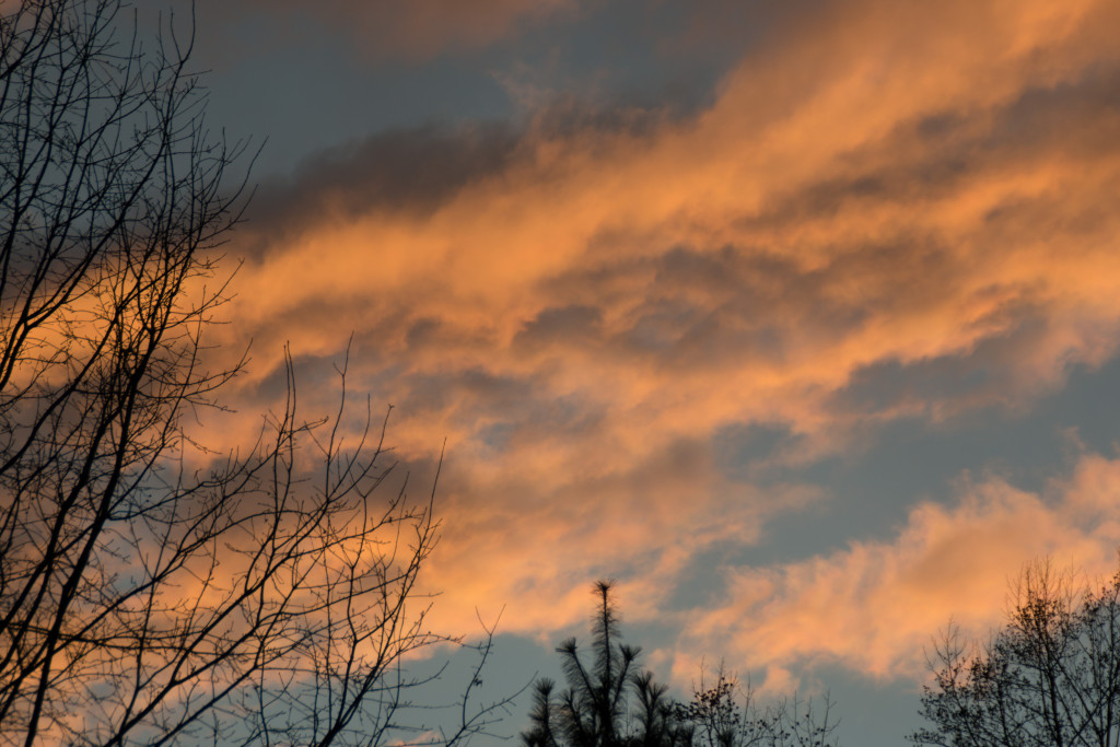 Photo of the week - Week One - Bowie Skyscape